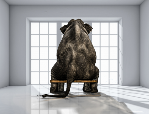 Hazard Mitigation: Take on the Elephant in the Room