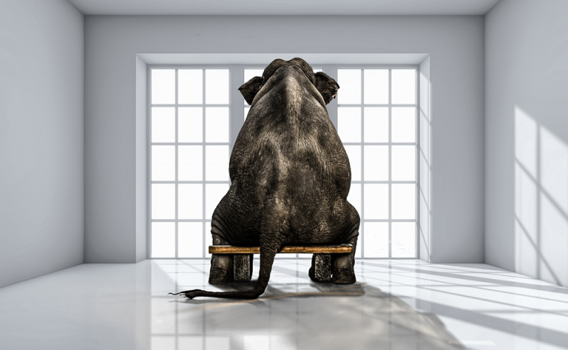 Hazard Mitigation--The Elephant in the Room