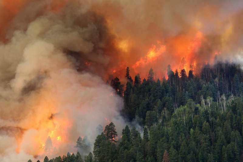 Hazard Mitigation Funds Following Colorado Fire