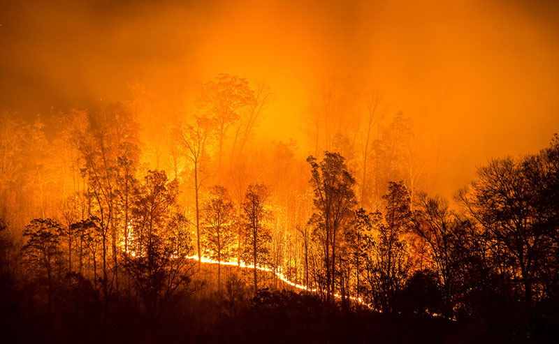 Wildfire Mitigation Funding Available From FEMA