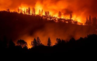 Camp Fire CA - Firewise USA