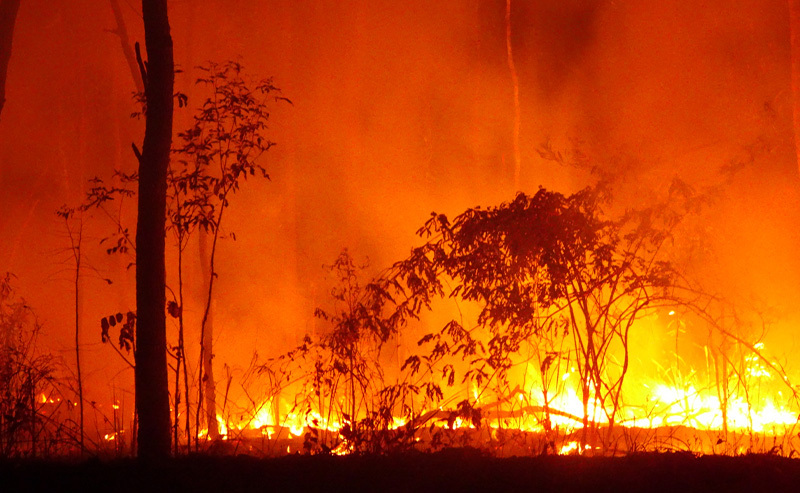 May is Wildfire Awareness Month
